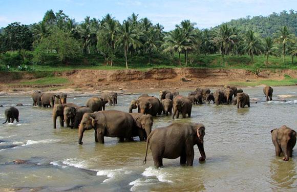 Districts of Sri Lanka 13
