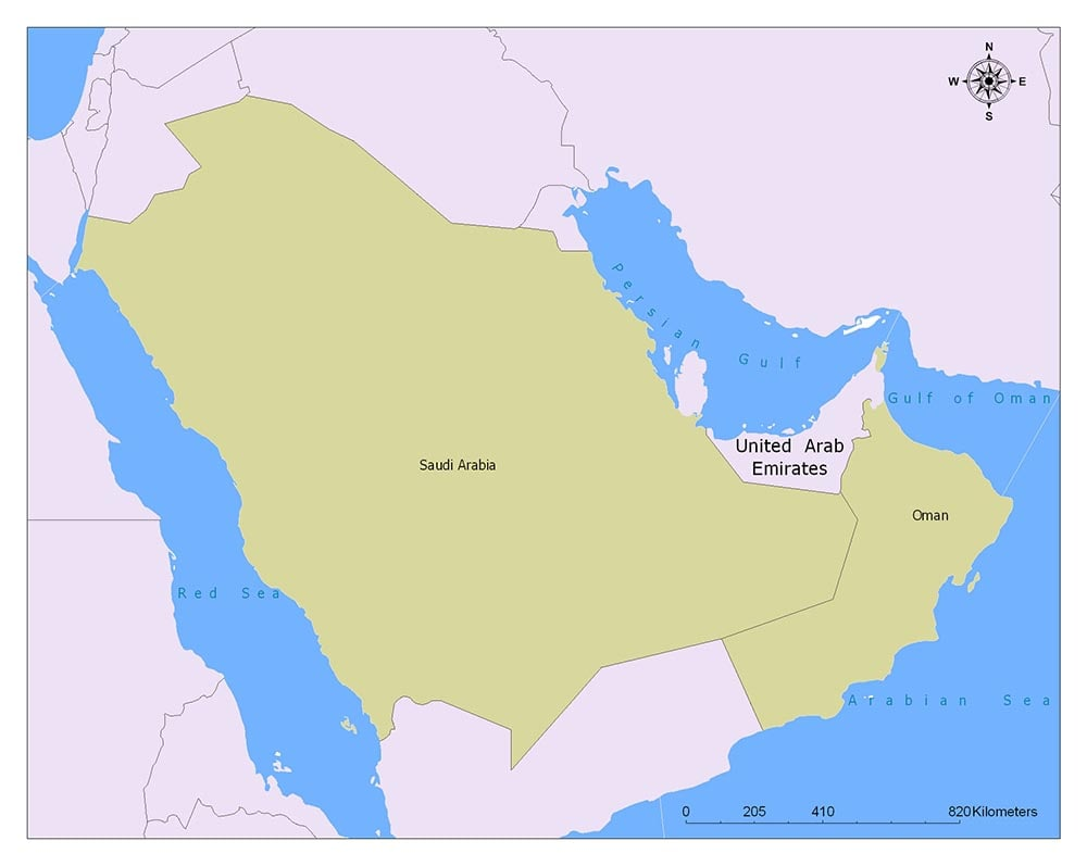 United Arab Emirates Flag Map and Meaning 2