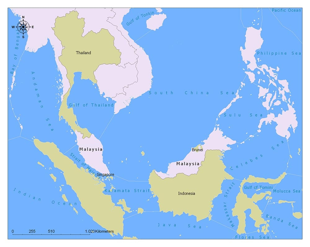 Malaysia Flag Map and Meaning 2
