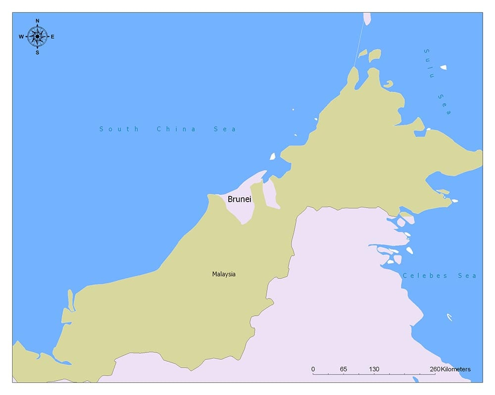 Brunei Flag Map and Meaning 2