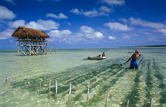 Tourism in Kiribati, 10 Reasons to Visit Kiribati 2