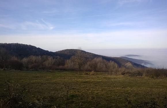 South Bačka