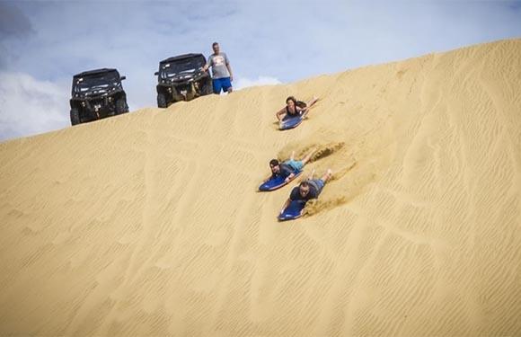 Sand Safaris