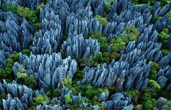 Madagascar's Stone Forest