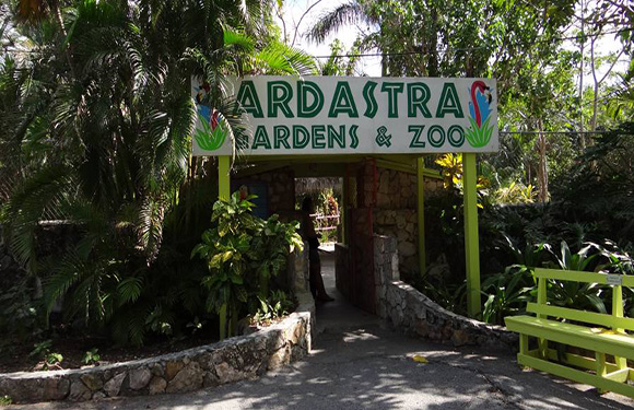 Ardastra Gardens Zoo and Conservation Centre