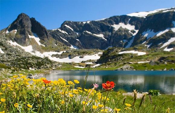 Nature Bulgaria