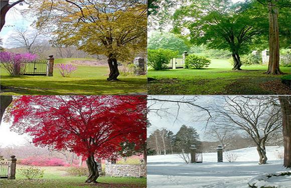 Seasons in Italy
