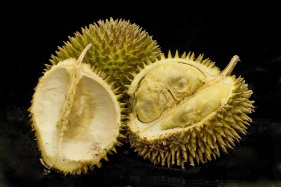 Rare Fruits in the World (Our Top 10 Picks) 1