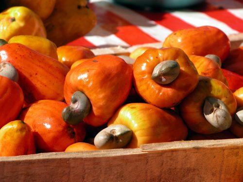 Kaju Fruits