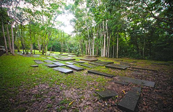 10 Reasons to Visit Suriname 1