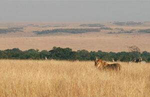 10 Reasons to Visit Kenya 2