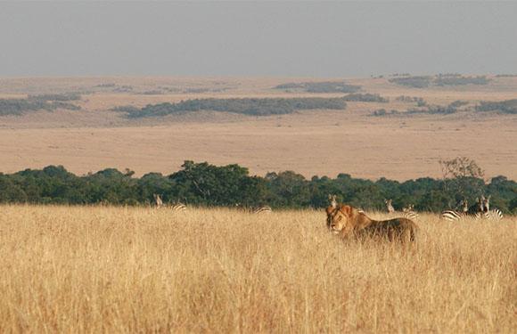 10 Reasons to Visit Kenya 1